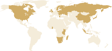 Image of google map